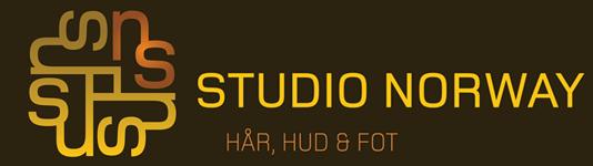 Studio Norway Logo